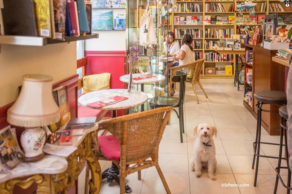 Librería Café La Clandestina