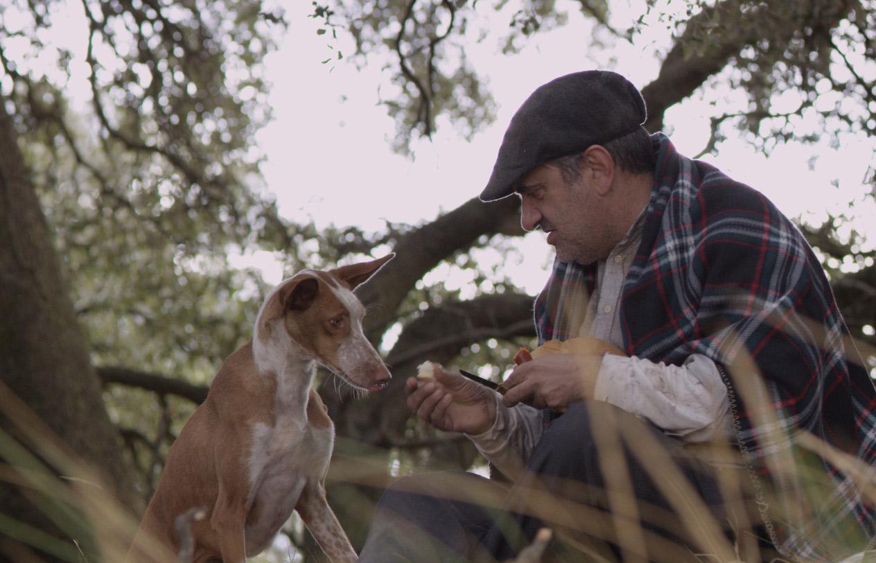 """""""Cocote, historia de un perro"""", un desgarrador corto sobre"""